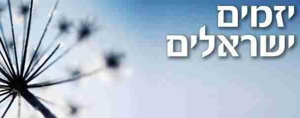 Israeli entrepreneurs - יזמים ישראלים